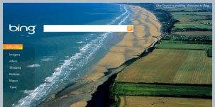 Bing substitui a tela branca do Google por imagem temática.